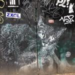 Graffiti Cat